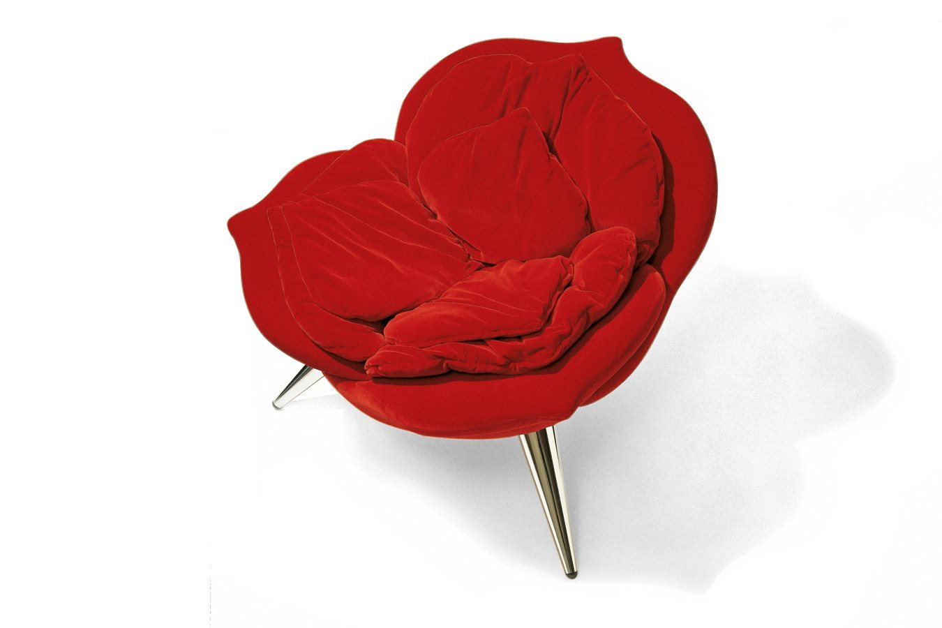 Rose Chair by Edra