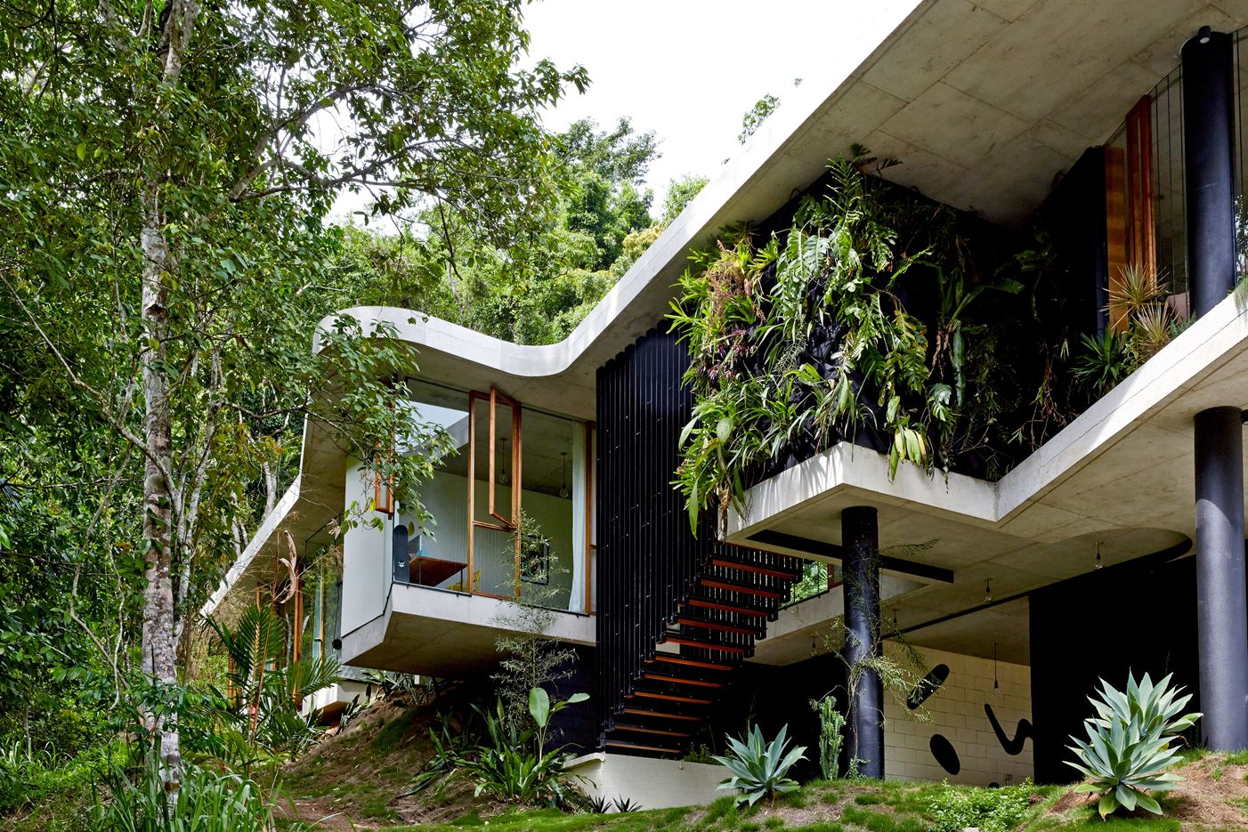 Planchonella House in Queensland, Australia by Jesse Bennett Architect