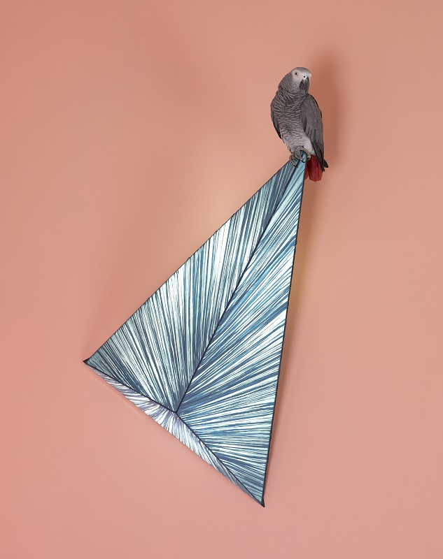 Zooid Wall Lamp by Aqua Creations