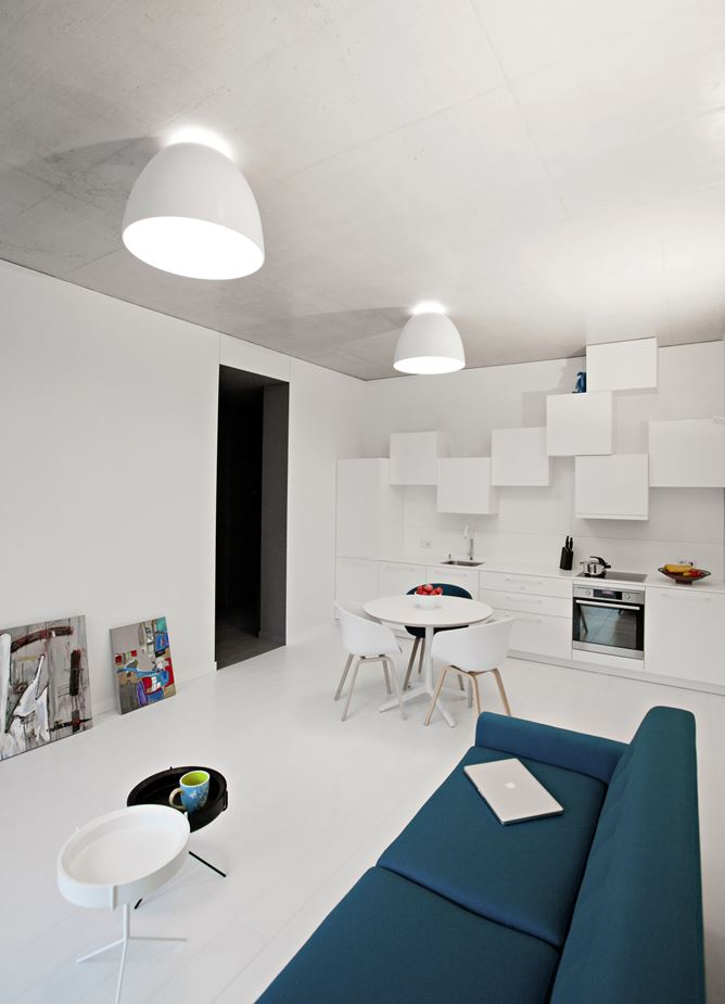 BW Apartment in Vilnius, Lithuania by YCL Styudio
