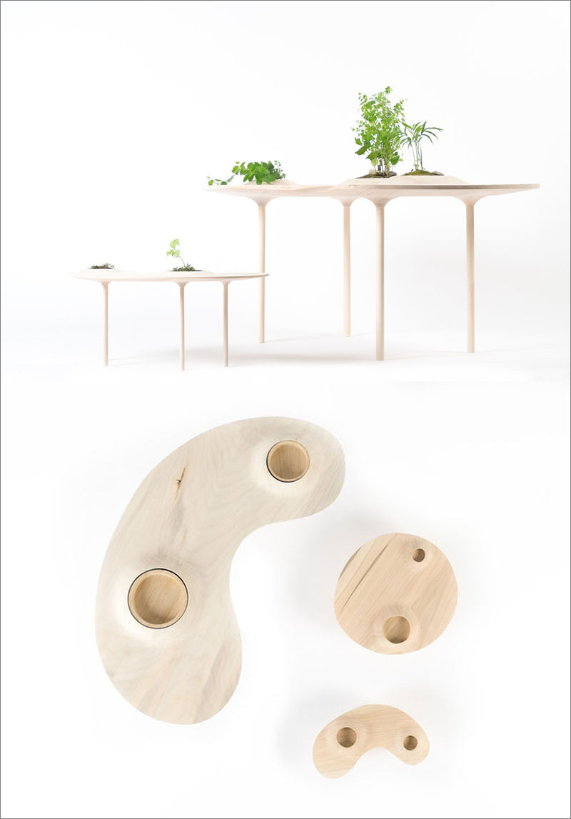 Modern Wood Coffee Table by Studio Wooyoo